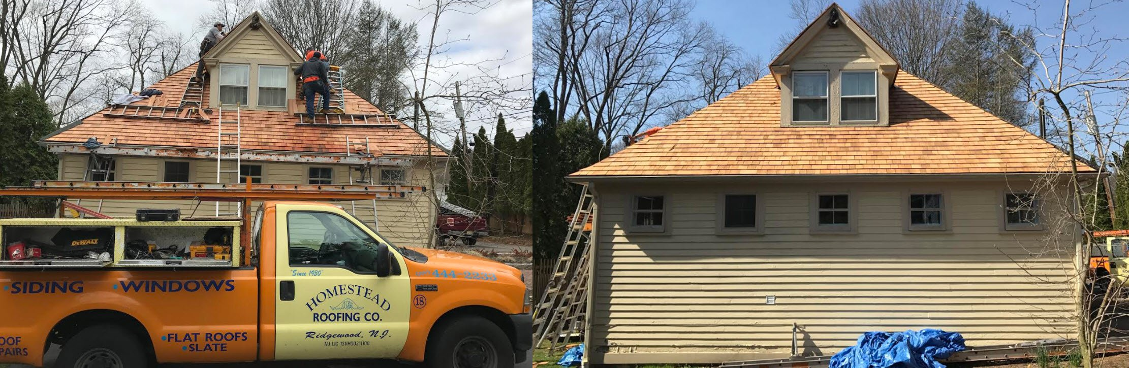Roof Shingles Ridgewood Homestead Roofing Co